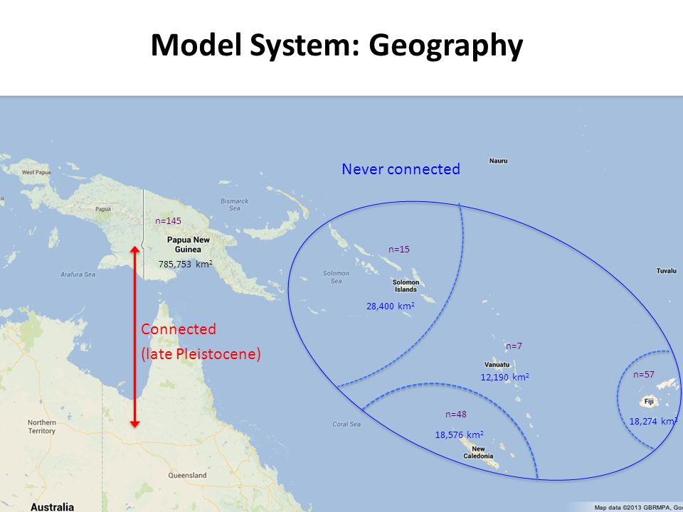 Model System: Geography Connected (late Pleistocene) Never connected 18,274 km 2 18,576 km 2 12,190 km 2 28,400 km 2 785,753 km 2 n=145 n=15 n=7 n=48 n=57 Melanesian Pheidole ants is an excellent arthropod model for testing island biogeography hypotheses: The region was the focal area for classical biogeographic studies in the past New Guinea and Australia were connected during late Pleistocene = source area Archipelagos were never connected by land bridges Ant radiation probably occurred after the geological origin of the archipelagos Ants are speciose and their fauna is [relatively] carefully surveyed