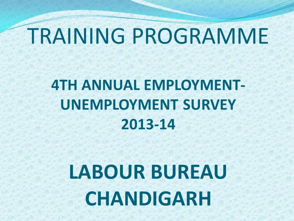 TRAINING PROGRAMME 4TH ANNUAL EMPLOYMENT- UNEMPLOYMENT SURVEY 2013-14 LABOUR BUREAU CHANDIGARH