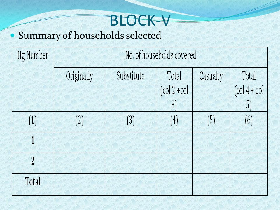 BLOCK-V Summary of households selected