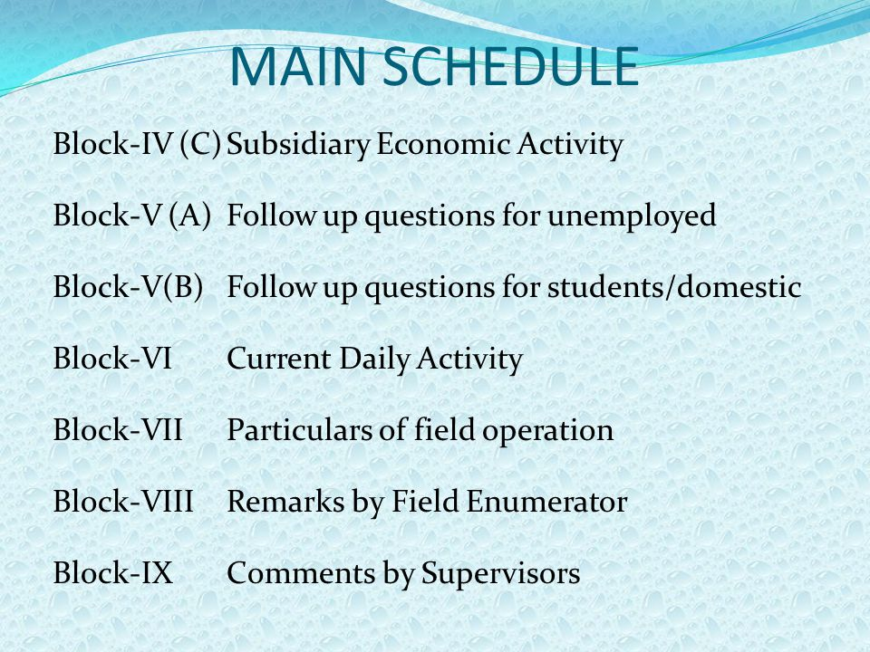 MAIN SCHEDULE Block-IV (C)Subsidiary Economic Activity Block-V (A)Follow up questions for unemployed Block-V(B)Follow up questions for students/domestic Block-VICurrent Daily Activity Block-VIIParticulars of field operation Block-VIIIRemarks by Field Enumerator Block-IXComments by Supervisors