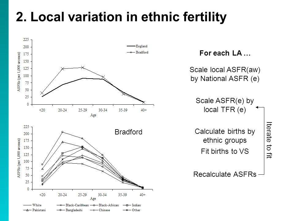 2. Local variation in ethnic fertility Scale local ASFR(aw) by National ASFR (e) Scale ASFR(e) by local TFR (e) Calculate births by ethnic groups Fit