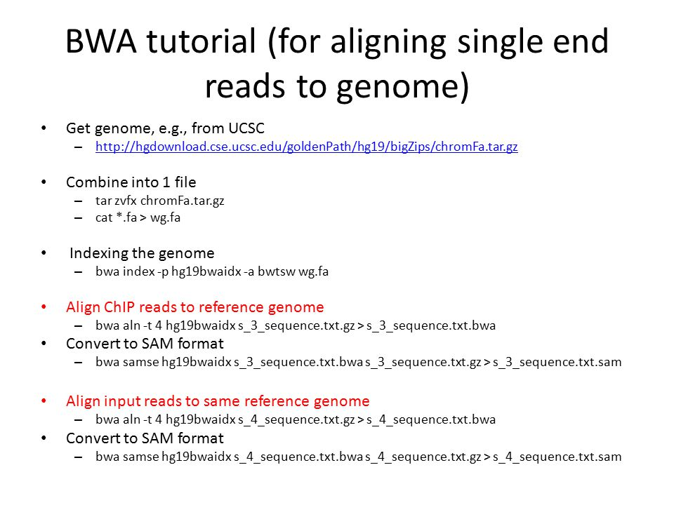 BWA tutorial (for aligning single end reads to genome) Get genome, e.g., from UCSC – http://hgdownload.cse.ucsc.edu/goldenPath/hg19/bigZips/chromFa.ta