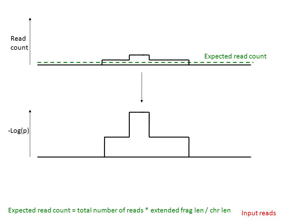 Read count Expected read count Input reads -Log(p) Expected read count = total number of reads * extended frag len / chr len
