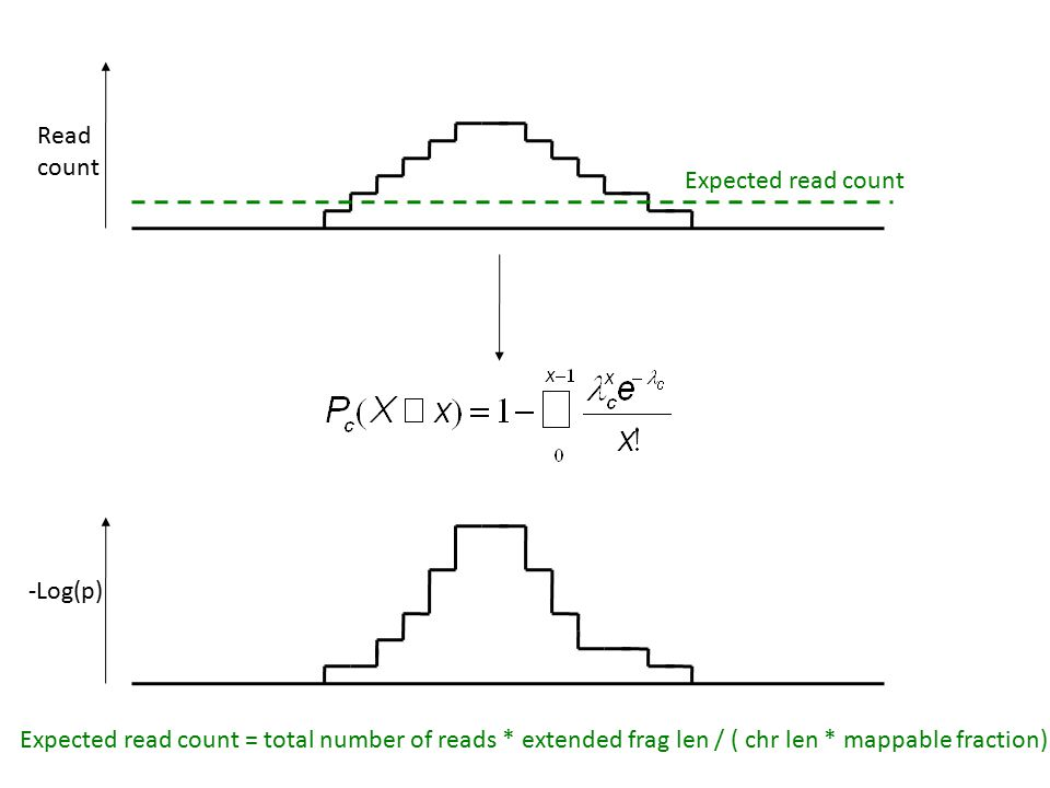 Read count Expected read count -Log(p) Expected read count = total number of reads * extended frag len / ( chr len * mappable fraction)