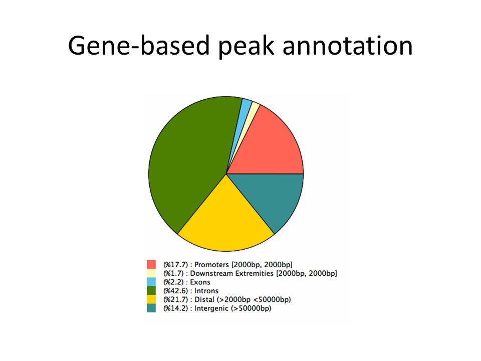 Gene-based peak annotation