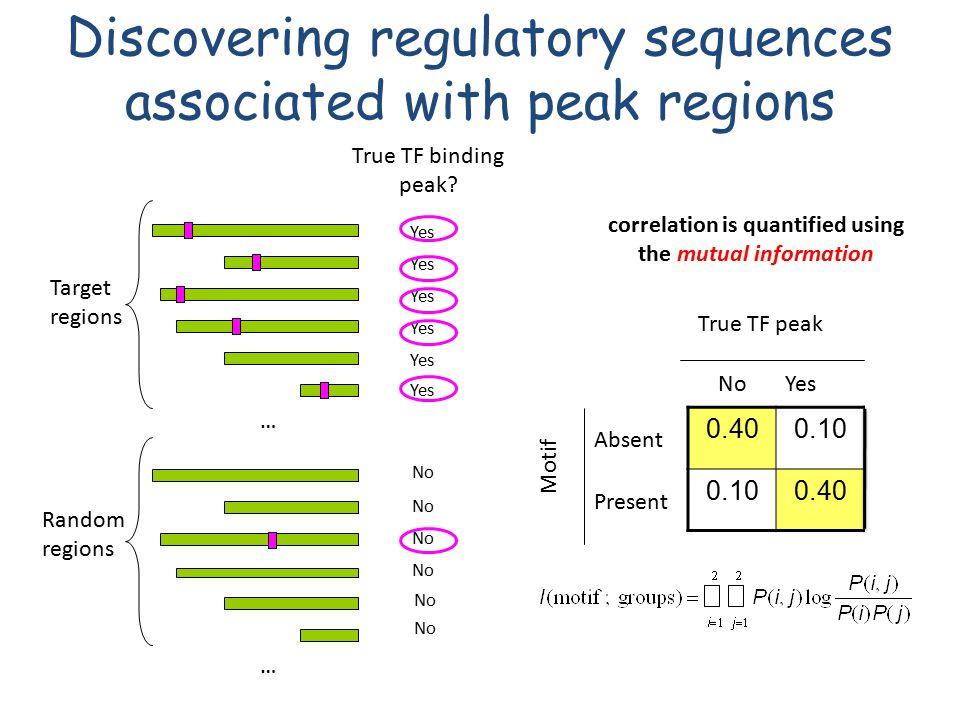 No … Random regions Discovering regulatory sequences associated with peak regions True TF binding peak? Yes … Target regions 0.400.100.33 0.100.400.00