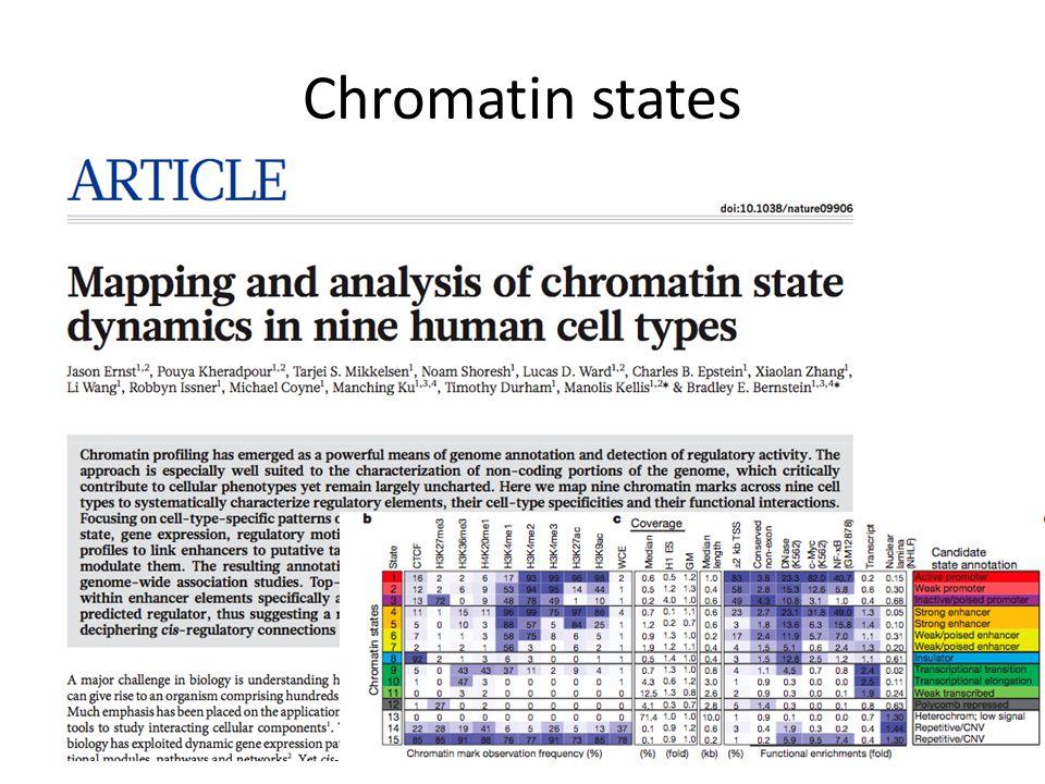 Chromatin states
