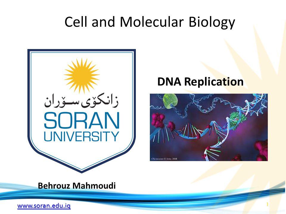 www.soran.edu.iq Cell and Molecular Biology Behrouz Mahmoudi DNA Replication 1