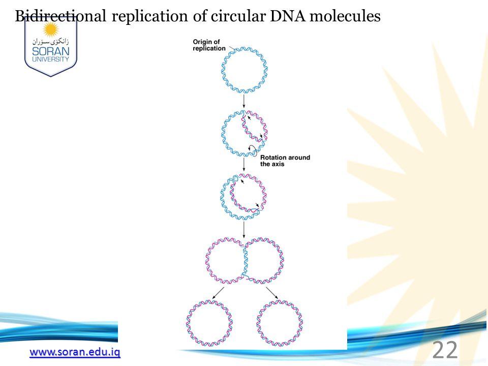 www.soran.edu.iq Bidirectional replication of circular DNA molecules 22