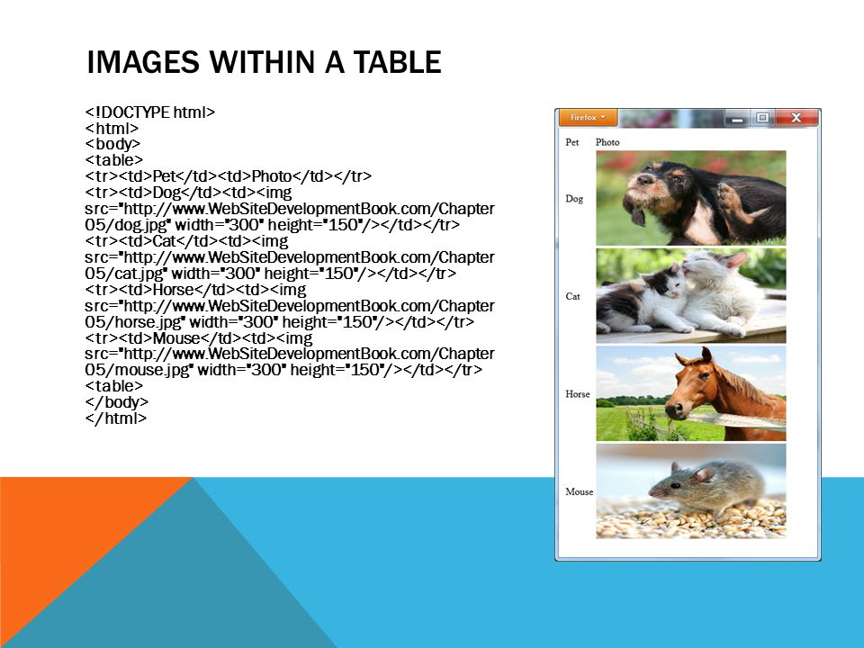 IMAGES WITHIN A TABLE Pet Photo Dog Cat Horse Mouse