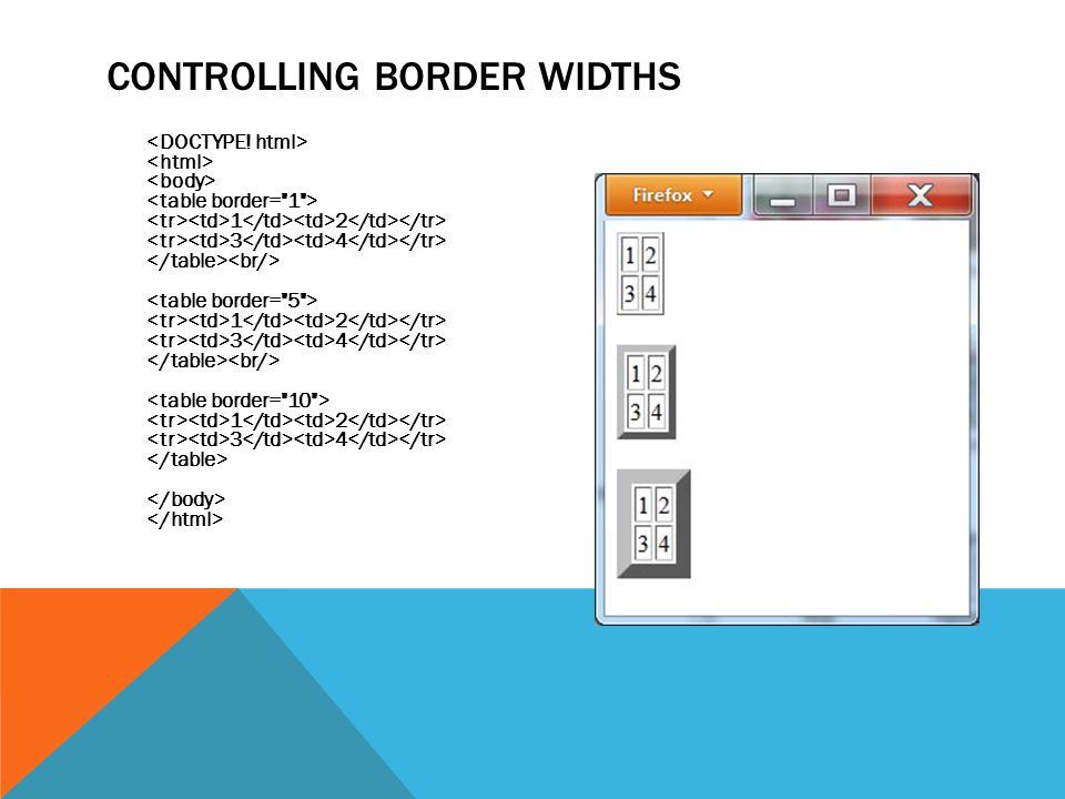 CONTROLLING BORDER WIDTHS 1 2 3 4 1 2 3 4 1 2 3 4