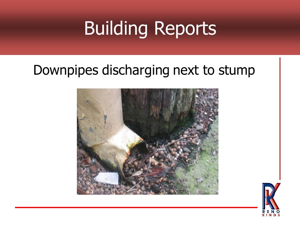 Building Reports Downpipes discharging next to stump