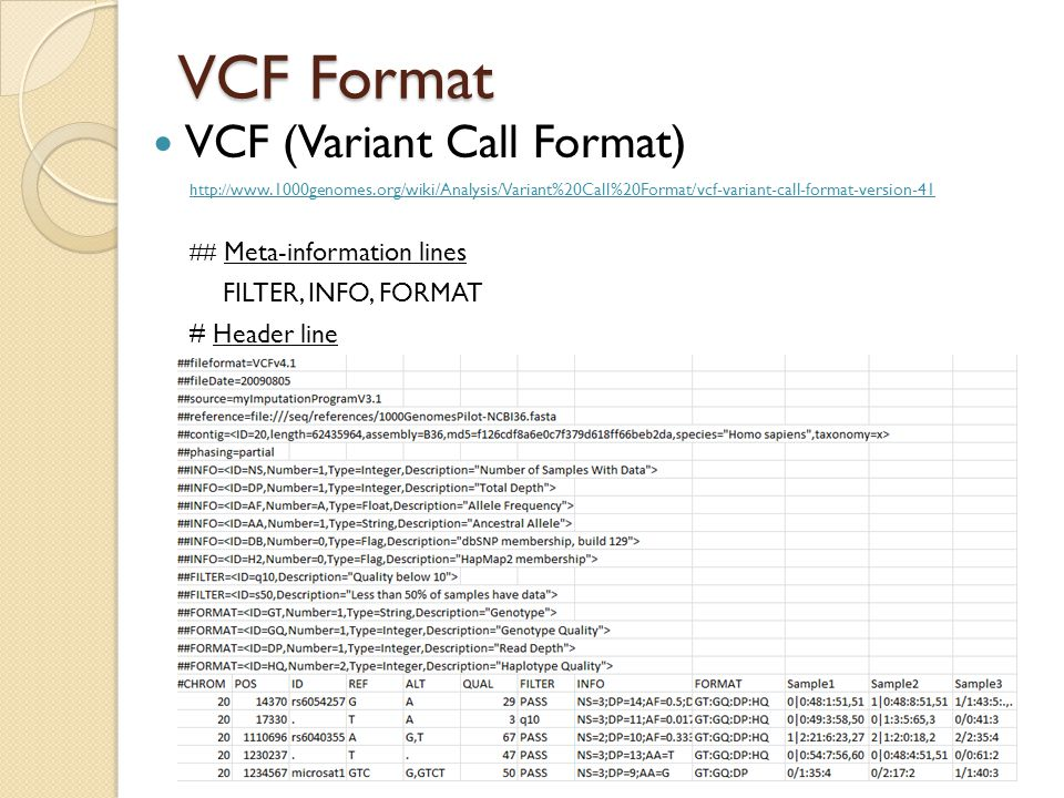 VCF Format VCF (Variant Call Format) http:// www.1000genomes.org/wiki/Analysis/Variant%20Call%20Format/vcf-variant-call-format-version-41 ## Meta-info