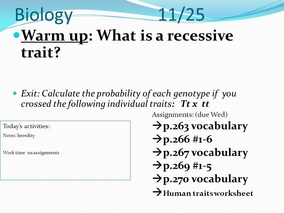 Biology 11/25 Warm up: What is a recessive trait? Exit: Calculate the probability of each genotype if you crossed the following individual traits: Tt