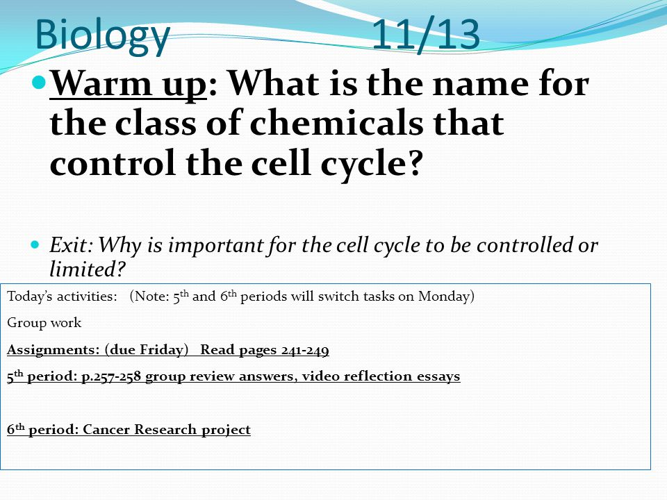Biology 11/13 Warm up: What is the name for the class of chemicals that control the cell cycle? Exit: Why is important for the cell cycle to be contro