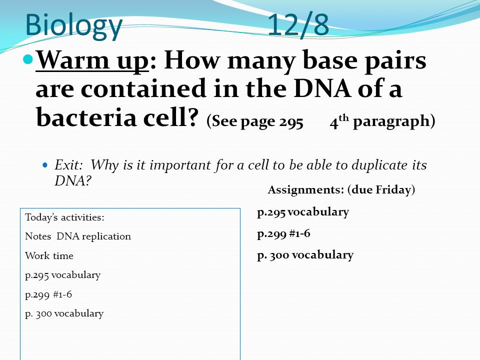 Biology 12/8 Warm up: How many base pairs are contained in the DNA of a bacteria cell? (See page 295 4 th paragraph) Exit: Why is it important for a c