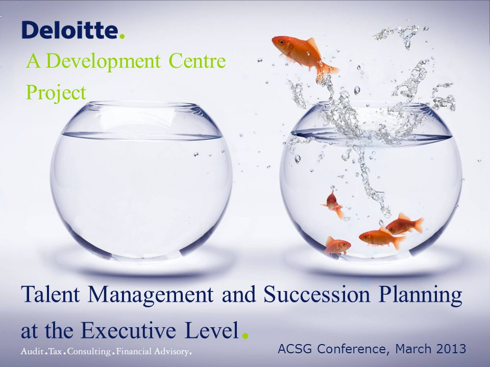 © 2013 Deloitte Touche Tohmatsu Limited32Deloitte 32 Phase 1: Project Set Up Phase 2: Strategic Alignment of Business Drivers and creation of Competency Models Phase 3: Configuration, selection and launch of all assessment activities Outcomes of operational executive acceleration centres Introduction and Project Background Outcomes of executive acceleration centres Individual Performance Phase 4: Feedback to individuals Phase 5: Supporting leadership development – Year 1