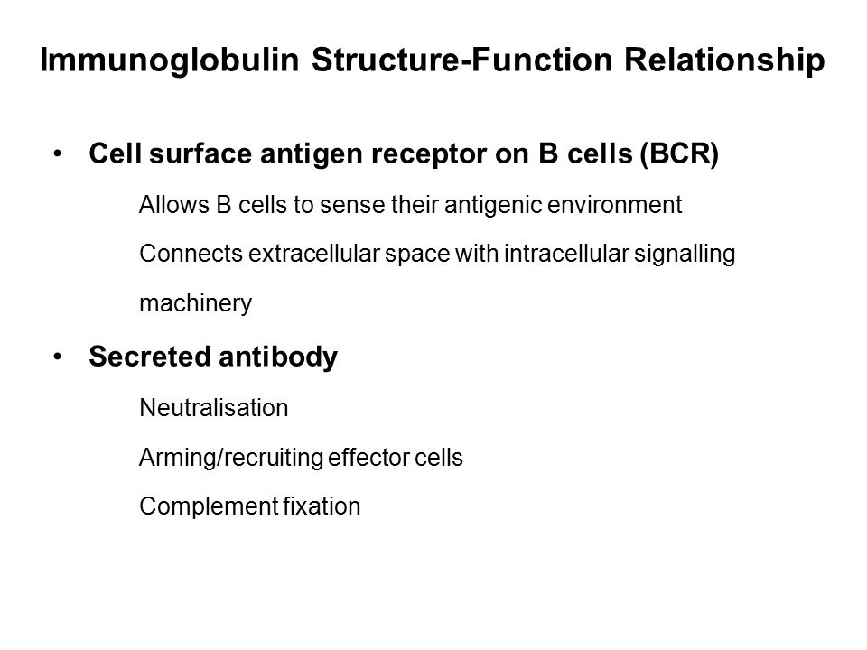 Cell surface antigen receptor on B cells (BCR) Allows B cells to sense their antigenic environment Connects extracellular space with intracellular sig
