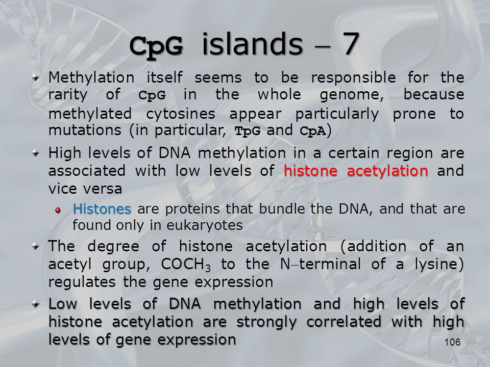 106 Methylation itself seems to be responsible for the rarity of CpG in the whole genome, because methylated cytosines appear particularly prone to mu