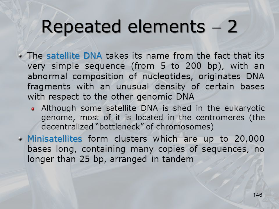 146 satellite DNA The satellite DNA takes its name from the fact that its very simple sequence (from 5 to 200 bp), with an abnormal composition of nuc