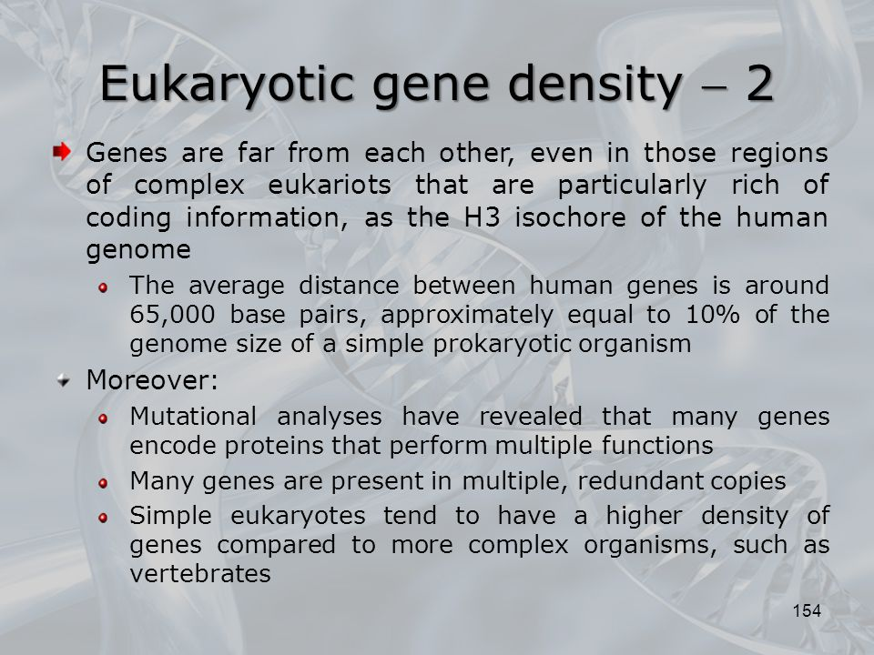 154 Genes are far from each other, even in those regions of complex eukariots that are particularly rich of coding information, as the H3 isochore of