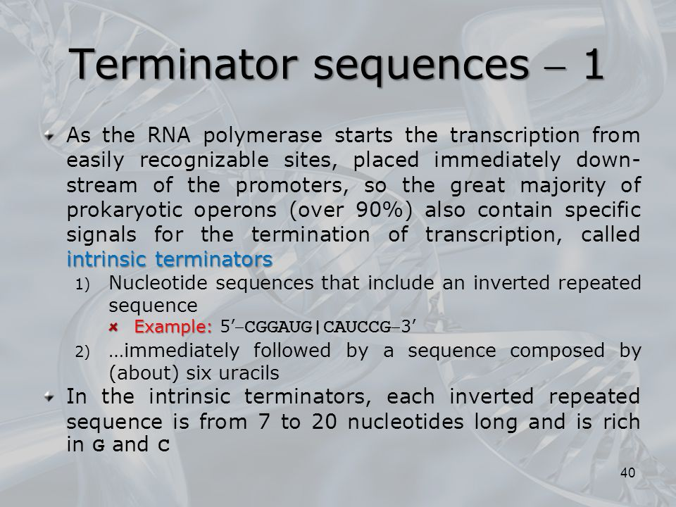 Terminator sequences  1 intrinsic terminators As the RNA polymerase starts the transcription from easily recognizable sites, placed immediately down-