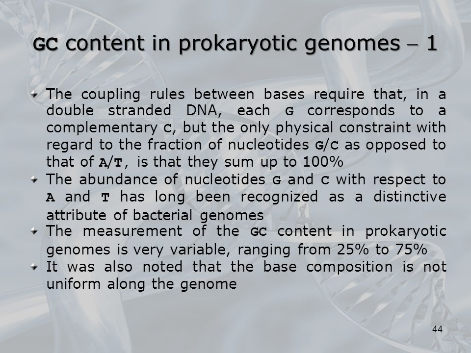 GC content in prokaryotic genomes  1 The coupling rules between bases require that, in a double stranded DNA, each G corresponds to a complementary C