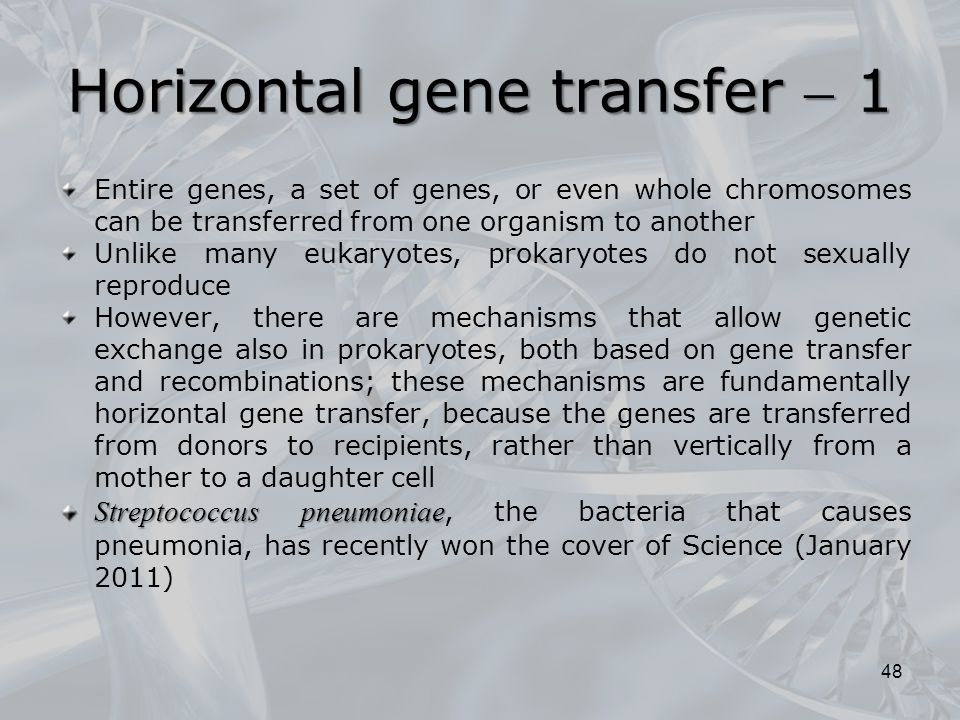 Horizontal gene transfer  1 Entire genes, a set of genes, or even whole chromosomes can be transferred from one organism to another Unlike many eukar