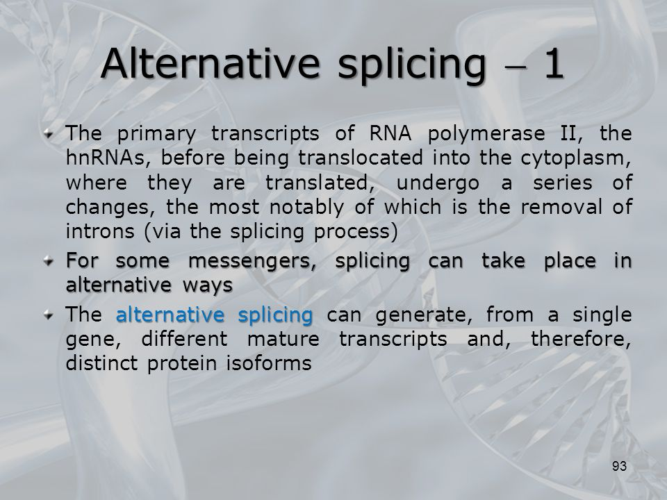 Alternative splicing  1 The primary transcripts of RNA polymerase II, the hnRNAs, before being translocated into the cytoplasm, where they are transl