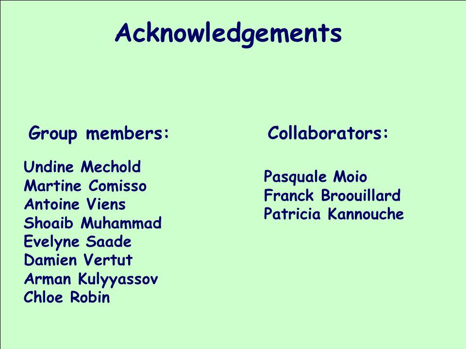 Acknowledgements Undine Mechold Martine Comisso Antoine Viens Shoaib Muhammad Evelyne Saade Damien Vertut Arman Kulyyassov Chloe Robin Group members: