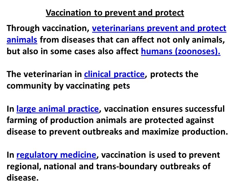 Through vaccination, veterinarians prevent and protect animals from diseases that can affect not only animals, but also in some cases also affect huma