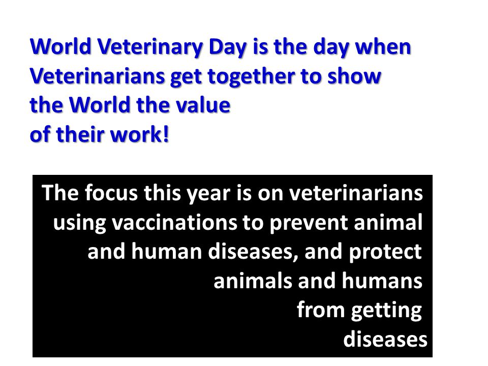 World Veterinary Day is the day when Veterinarians get together to show the World the value of their work.