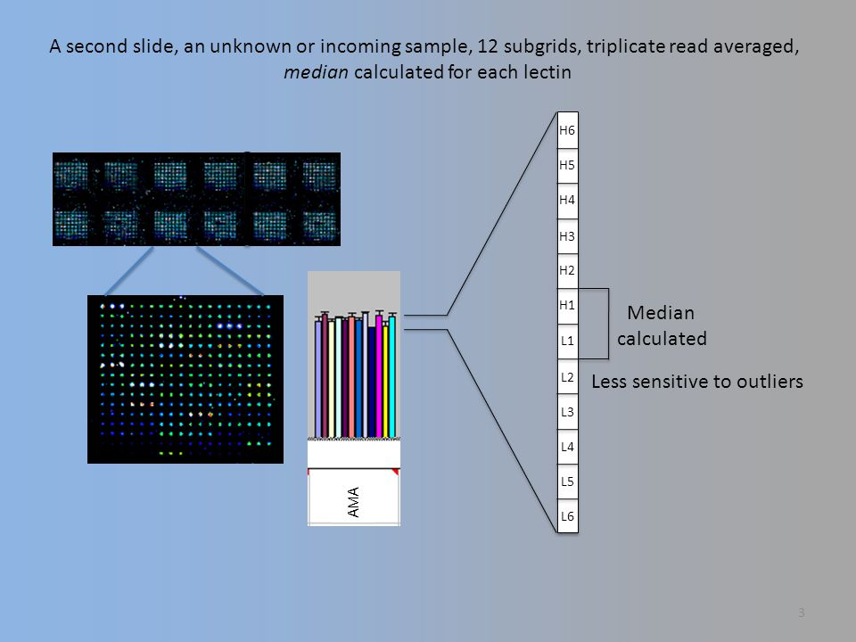 A second slide, an unknown or incoming sample, 12 subgrids, triplicate read averaged, median calculated for each lectin Median calculated Less sensitive to outliers L6 L5 L1 L2 L3 L4 H1 H6 H5 H4 H3 H2 A AMA 3