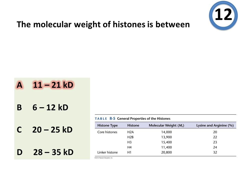 The molecular weight of histones is between 12