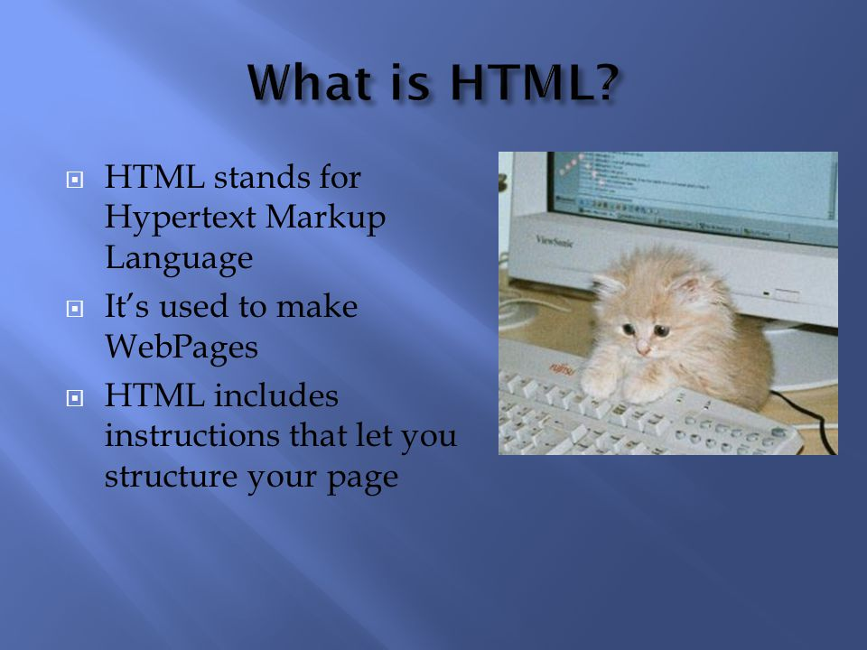 Here's an example of a webpage made with the help of HTML. Who knew HTML was so useful?