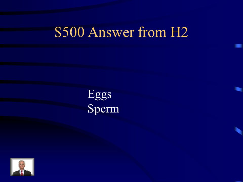 $500 Question from H2 What are the haploid gametes in males? What are the haploid gametes in females?