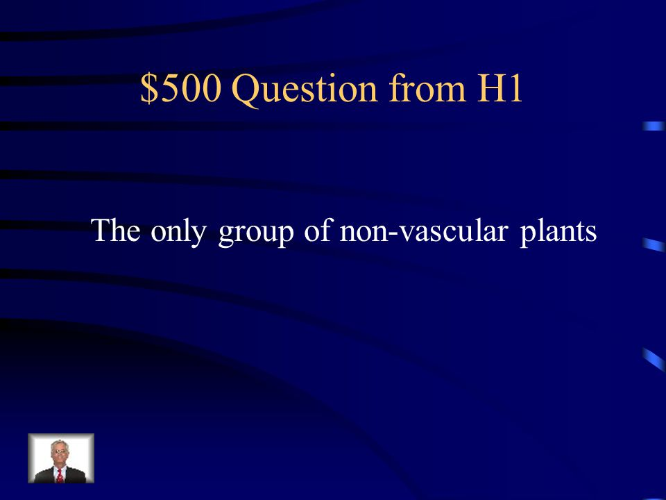 $400 Answer from H1 What are vascular tissues?