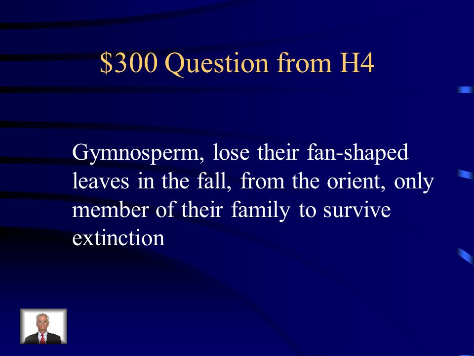 $200 Answer from H4 What are conifers