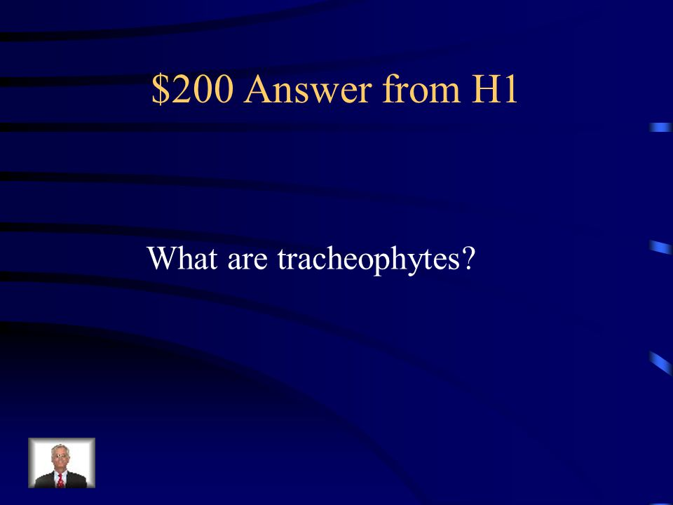 $200 Question from H1 They are the vascular plants with transport tissues in them