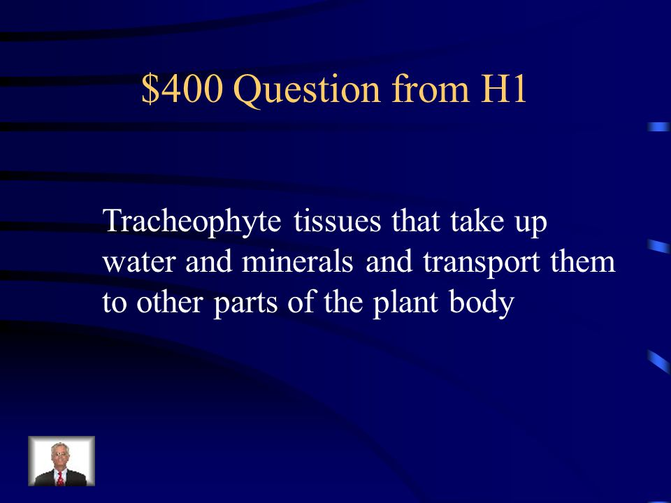 $300 Answer from H1 What are plants