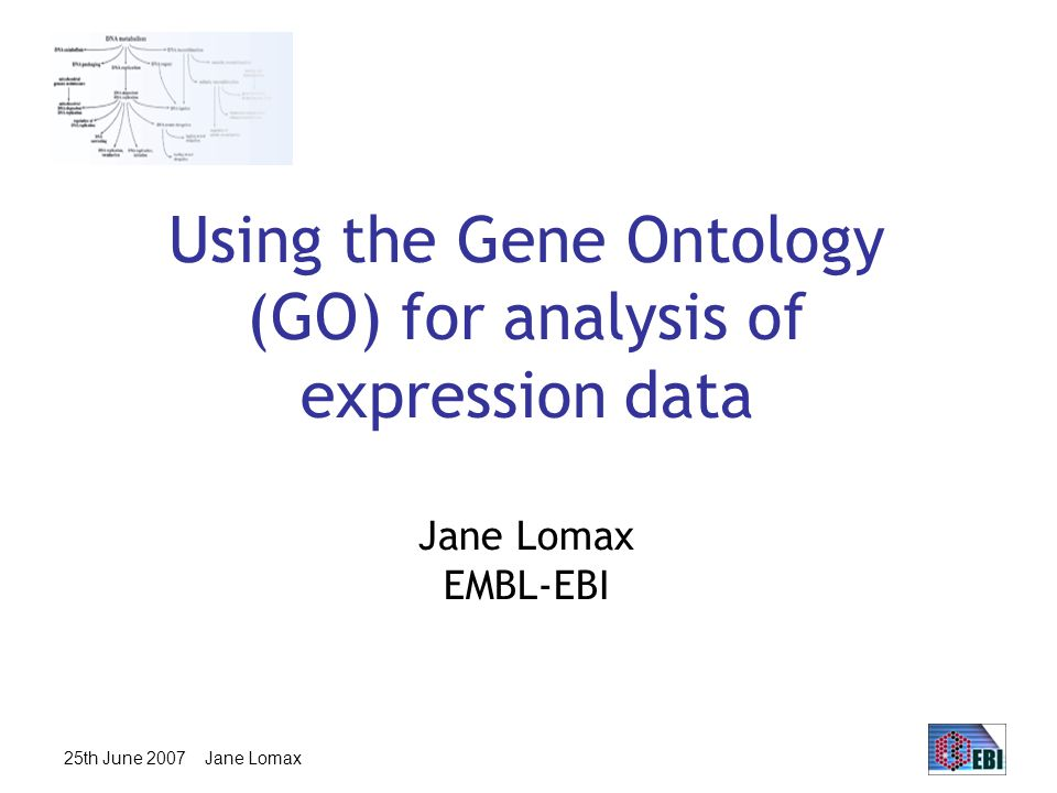 25th June 2007 Jane Lomax Using the Gene Ontology (GO) for analysis of expression data Jane Lomax EMBL-EBI