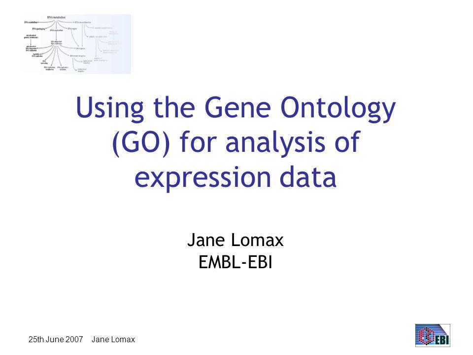 25th June 2007 Jane Lomax Biological Process transcription