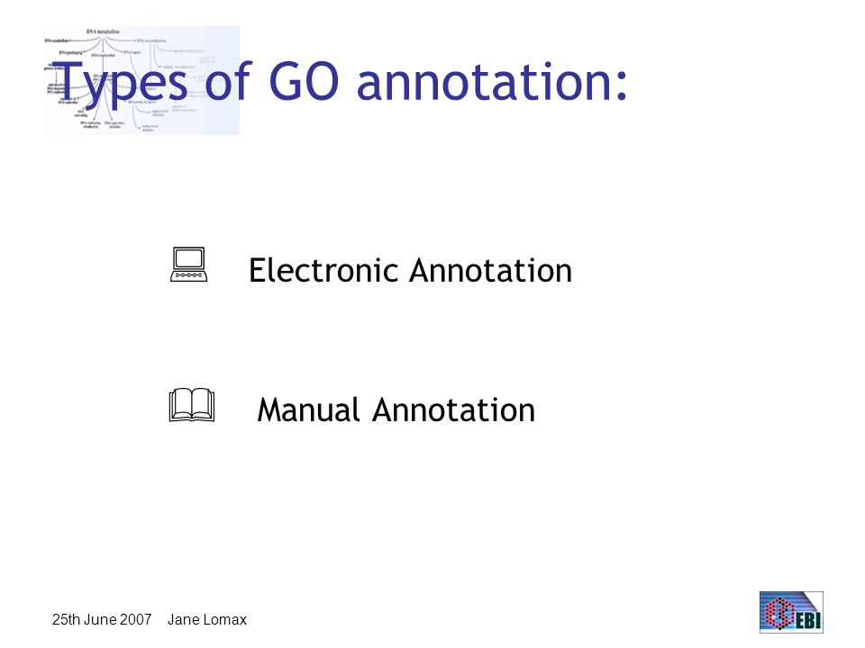 25th June 2007 Jane Lomax Types of GO annotation:  Electronic Annotation  Manual Annotation