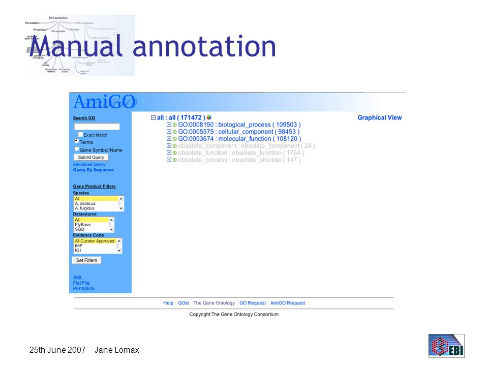 25th June 2007 Jane Lomax Manual annotation