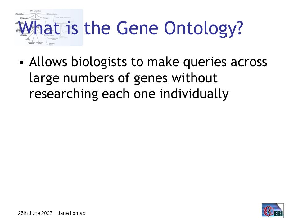 25th June 2007 Jane Lomax GO tools GO resources are freely available to anyone to use without restriction –Includes the ontologies, gene associations and tools developed by GO Other groups have used GO to create tools for many purposes: http://www.geneontology.org/GO.tools