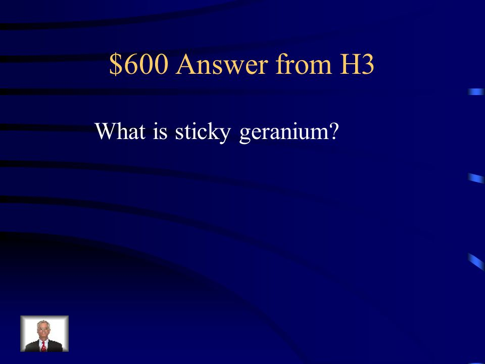 $600 Question from H3