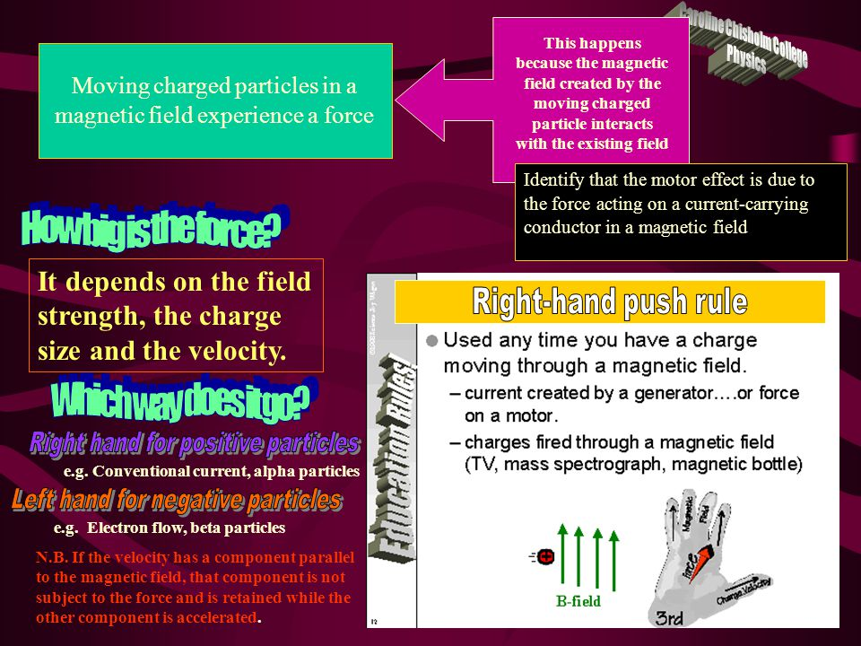 Discuss the effect on the magnitude of the force on a current-carrying conductor of variations in: – the strength of the magnetic field in which it is located – the magnitude of the current in the conductor – the length of the conductor in the external magnetic field – the angle between the direction of the external magnetic field and the direction of the length of the conductor where  is the angle between the magnetic field and the conductor So F is directly proportional to B, I, l and sin  I  B Perform a first-hand investigation to demonstrate the motor effect Jacaranda Experiment 6.2 N.B.