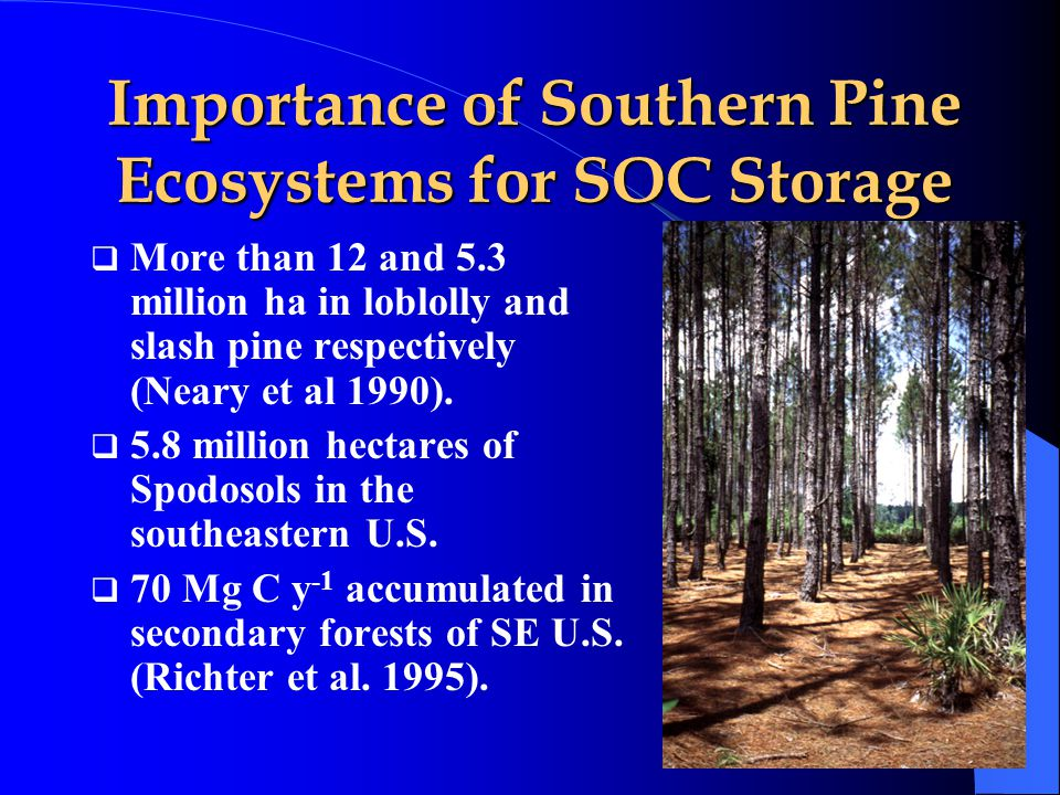 Importance of Southern Pine Ecosystems for SOC Storage  More than 12 and 5.3 million ha in loblolly and slash pine respectively (Neary et al 1990).