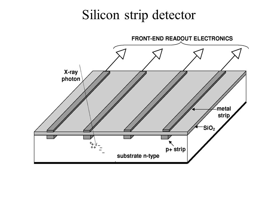 Silicon strip detector