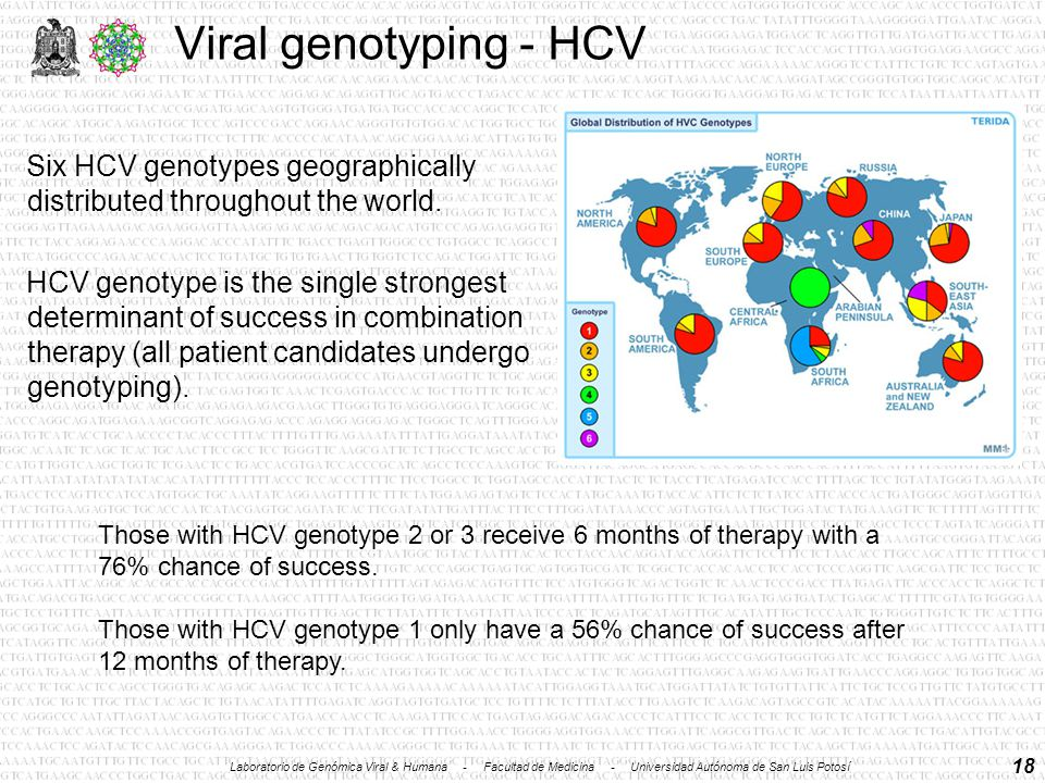 18 Viral genotyping - HCV Six HCV genotypes geographically distributed throughout the world.